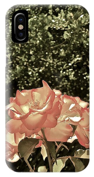 Rose 55 IPhone Case