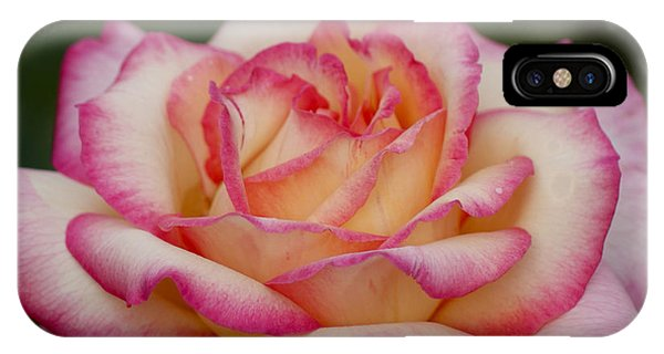 Rose Beauty IPhone Case
