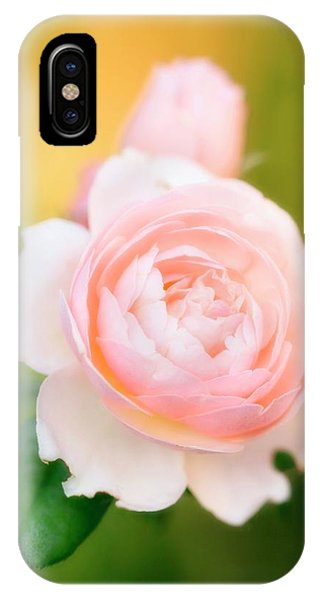 Rose Flowers (rosa Hybrid) Phone Case by Maria Mosolova/science Photo Library