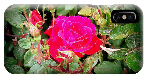 Rose Garden Centerpiece IPhone Case