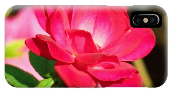 Rose Intensity Phone Case by Van Ness