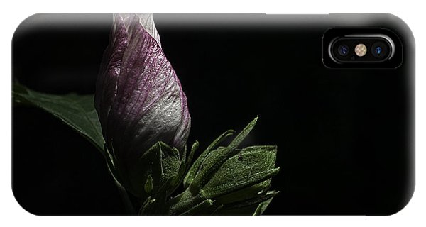 Rose Of Sharon At Dusk IPhone Case