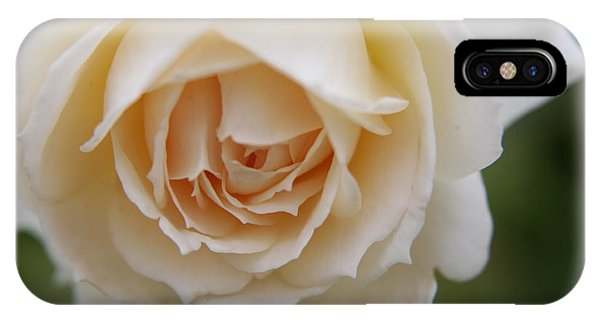 Rose... Pure And Simple  IPhone Case