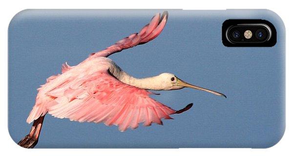Roseate Spoonbill Flight IPhone Case