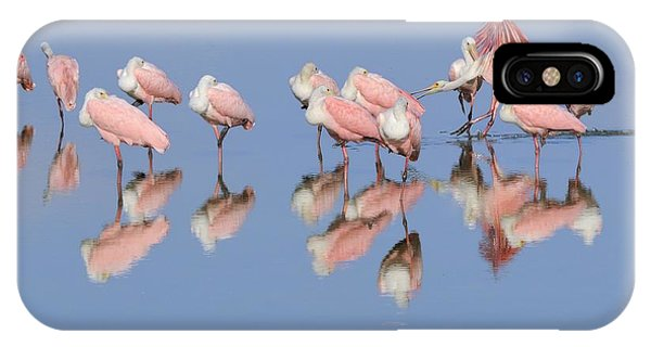 Roseate Spoonbills And Reflections IPhone Case