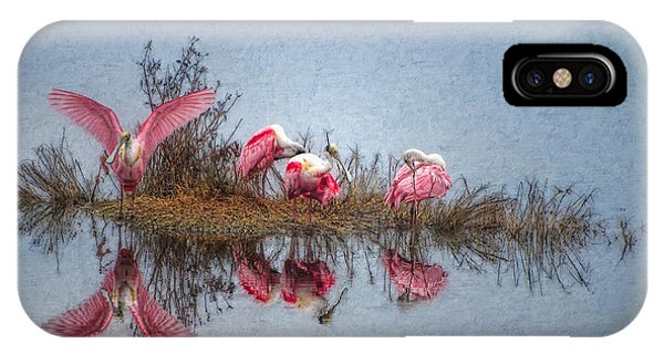 Roseate Spoonbills At Rest IPhone Case