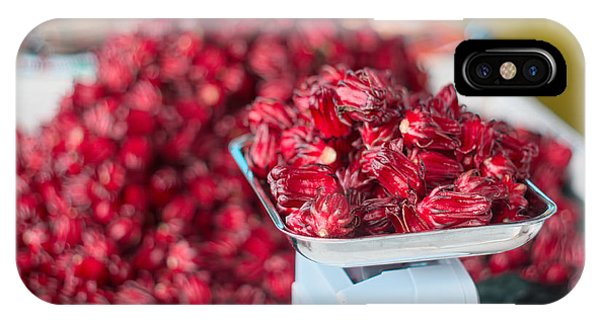 iPhone Case - Roselle Fruit by Jared Shomo
