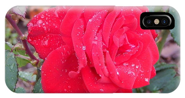 Rosie Red IPhone Case