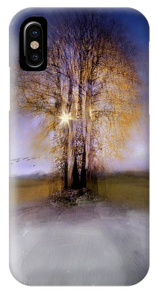 Birch Tree iPhone Case - Round by Milan Malovrh