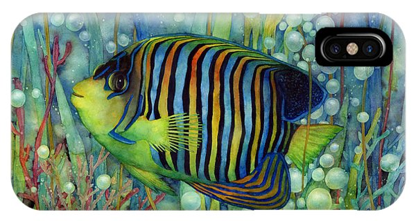 Room iPhone Case - Royal Angelfish by Hailey E Herrera