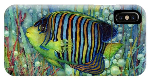 Fish iPhone Case - Royal Angelfish by Hailey E Herrera