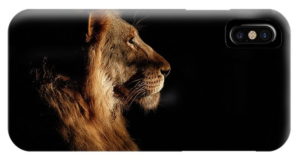 Lions iPhone Case - Royal Meeting In The Night by Andreas Hemb
