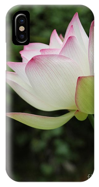Ruby Lips Lotus IPhone Case