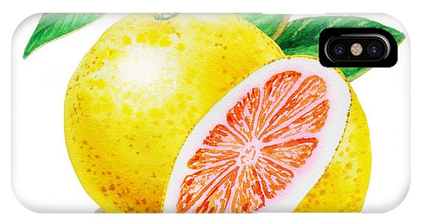 Grapefruit iPhone Case - Ruby Red Grapefruit by Irina Sztukowski