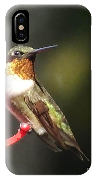 Ruby Throated Hummingbird 2 IPhone Case