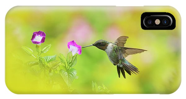Ruby-throated Hummingbird Male Phone Case by Rolf Nussbaumer