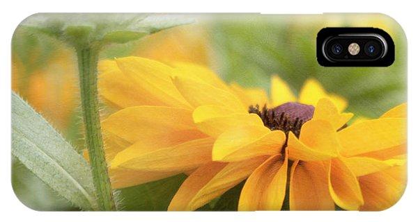Rudbeckia Flower IPhone Case