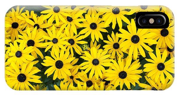 Rudbeckia Fulgida 'pot Of Gold'  IPhone Case