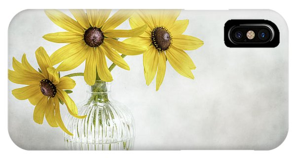 Plants iPhone Case - Rudbeckia by Mandy Disher