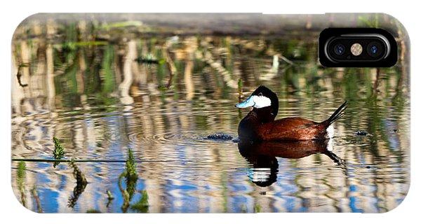 Ruddy Duck Drake IPhone Case