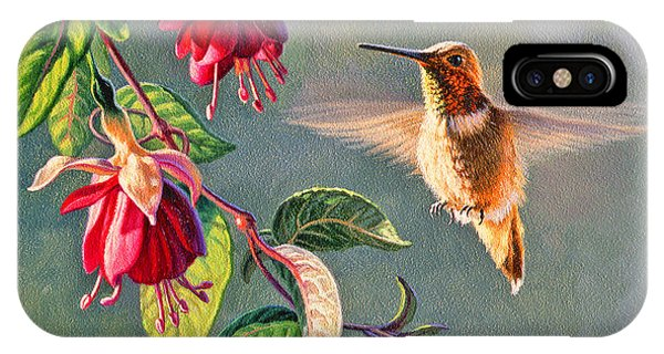 Hummingbird iPhone Case - Rufous And Fuschia by Paul Krapf