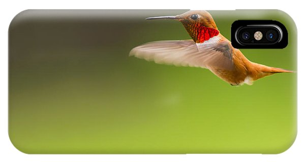 Rufous Hummingbird Male IPhone Case