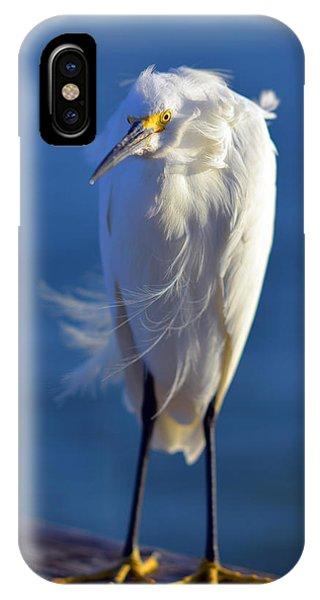 Rufus The Bird IPhone Case