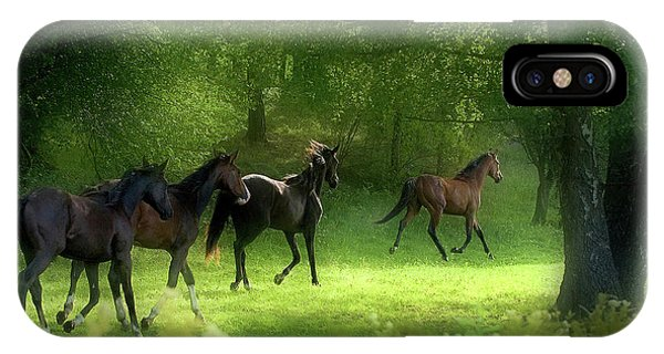 Swedish iPhone Case - Running Horses by Allan Wallberg