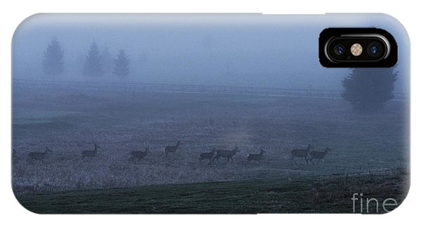 Running In The Mist IPhone Case
