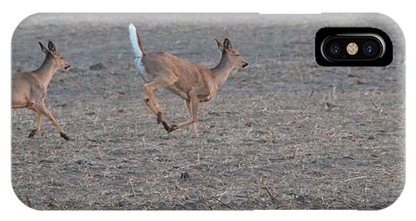White Tailed Deer iPhone Case - Running White-tailed Deer by Dan Sproul