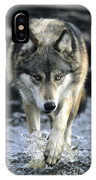 Running Wolf IPhone Case