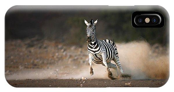 Running Zebra IPhone Case