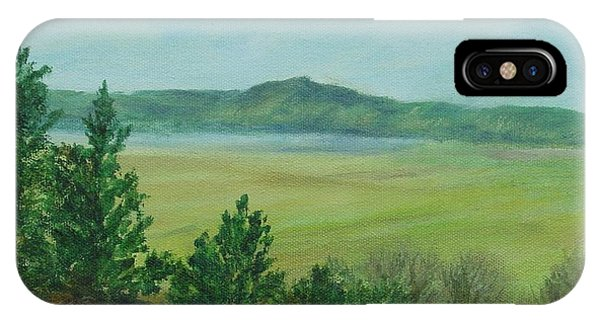 Rural Landscape Art Original Colorful Oil Painting Swan Lake Oregon  IPhone Case