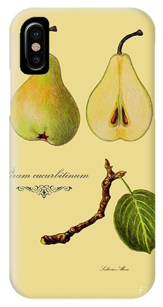 Russet Pear IPhone Case