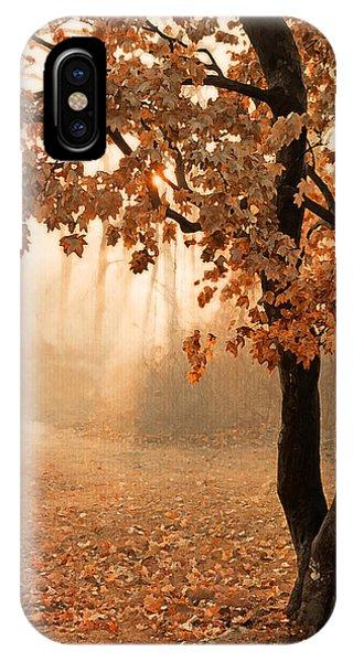 Rust Apricot Orange Maple Autumn Sunrise IPhone Case