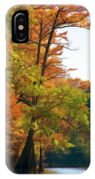 Rustic Autumn IPhone Case