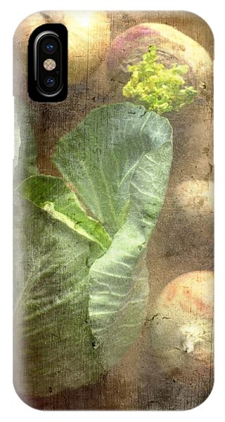 Rustic Vegetable Fruit Medley IIi IPhone Case