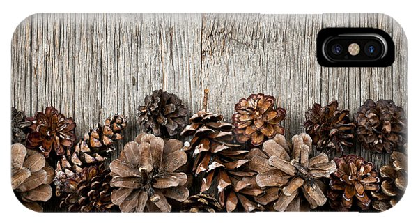 Autumn iPhone Case - Rustic Wood With Pine Cones by Elena Elisseeva