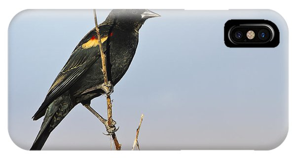Rwbb On Stick IPhone Case