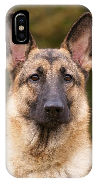 Sable German Shepherd Dog IPhone Case