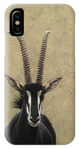 iPhone Case - Sable by James W Johnson