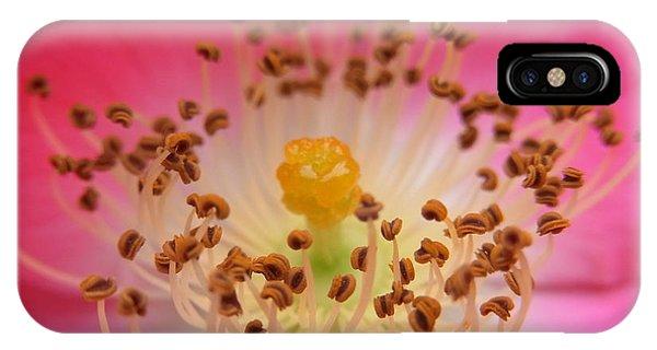 Sacred Adoration IPhone Case
