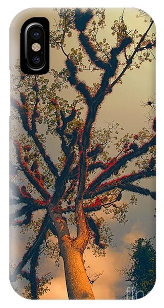 Sacred Tree IPhone Case