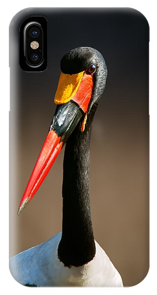 Head And Shoulders iPhone Case - Saddle-billed Stork Portrait by Johan Swanepoel