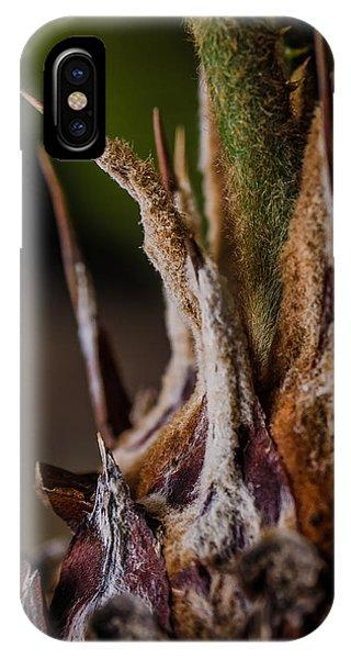 Sago Palm 1 IPhone Case