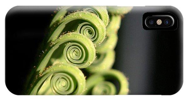 Sago Palm Leaf - 3 IPhone Case