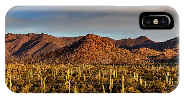 Saguaro Cactus Dominate The Landscape Phone Case by Chuck Haney