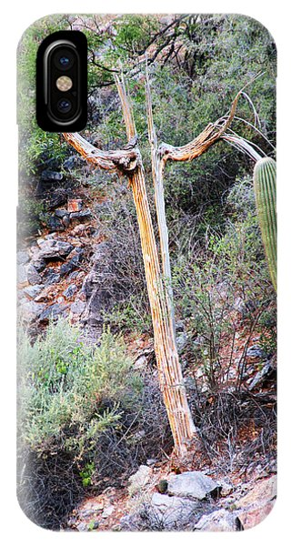 Saguaro Skeleton IPhone Case
