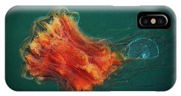 Salish Sea Jelly Drama IPhone Case