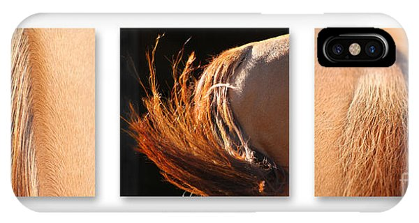 Salon D'equus Dark IPhone Case
